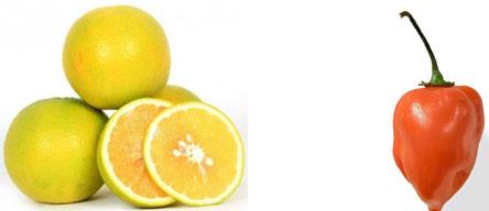 Citrus Limetta & Habanero Chile