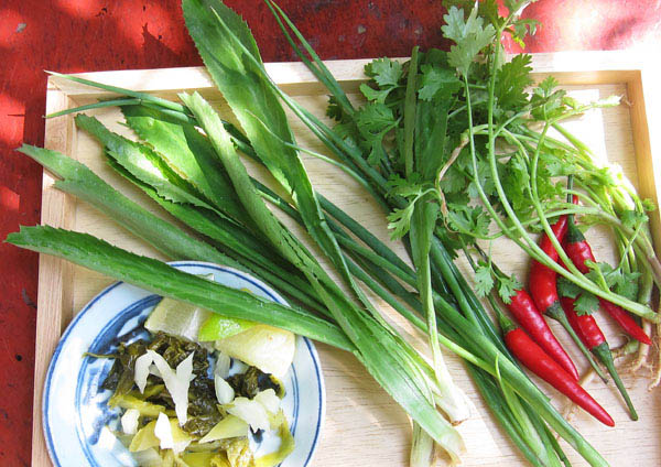 Fresh garnishes for Pho Bo: pickled mustars greens, ngo gai(saw tooth coriander), chilies, scallions, coriander and lime wedges,