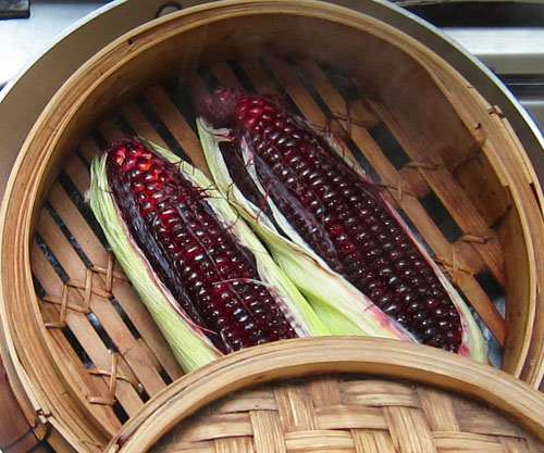 teaming Ruby Red Sweetcorn