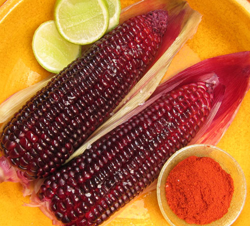 Siam Ruby Red Sweetcorn
