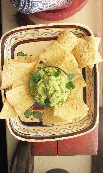Guacamole Basics
